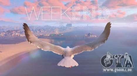 Vidéo de joueurs dans GTA 5: le TOP de la semaine