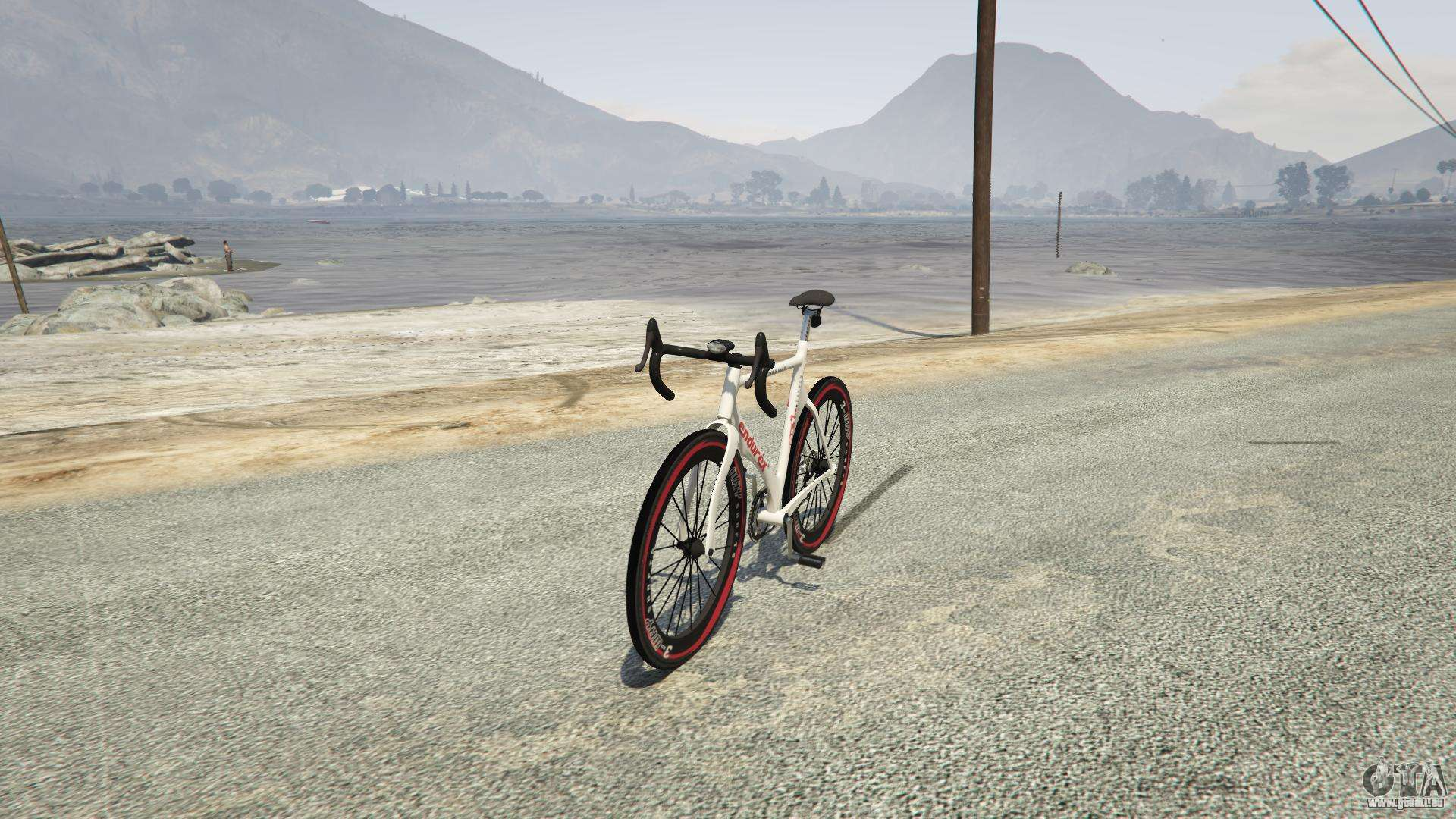 Endurex Race Bike aus GTA 5
