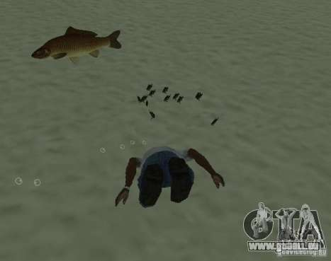 Nouveaux poissons pour GTA San Andreas deuxième écran