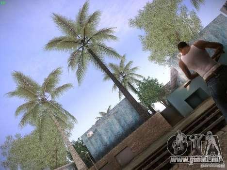 CamHack v1.2 für GTA San Andreas