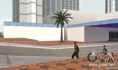 Project Oblivion Palm pour GTA San Andreas deuxième écran