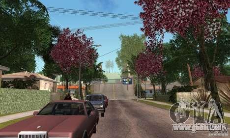 Green Piece v1.0 für GTA San Andreas her Screenshot