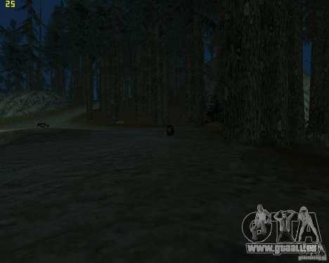 Ours pour GTA San Andreas troisième écran