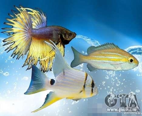 Neue Fische (Ozean) für GTA San Andreas