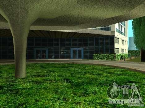 Nouvelles textures pour le V-Rock pour GTA San Andreas cinquième écran