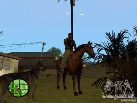 Animaux dans GTA San Andreas 2.0 pour GTA San Andreas