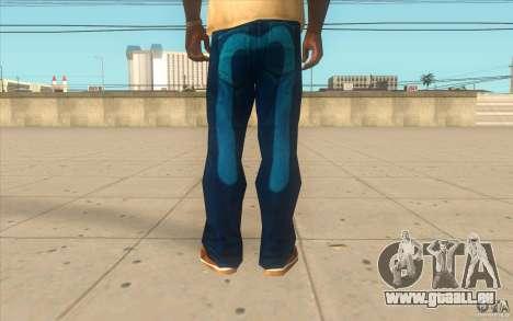 Remix-Evisu-Joker-Burberry Hose für GTA San Andreas dritten Screenshot