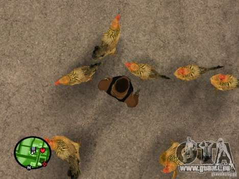 Poulets dans GTA San Andreas pour GTA San Andreas deuxième écran