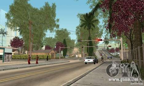 Green Piece v1.0 für GTA San Andreas