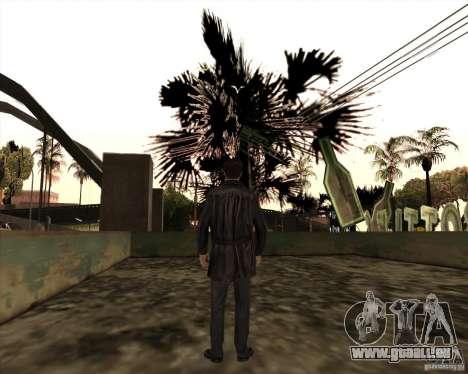 Rainures blanches pour GTA San Andreas huitième écran