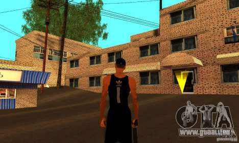 Russische Haus Textur für GTA San Andreas dritten Screenshot