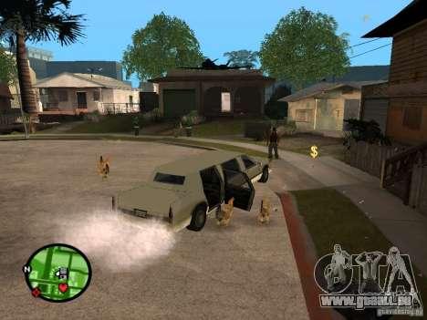 Poulets dans GTA San Andreas pour GTA San Andreas troisième écran