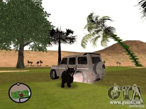 Animaux dans GTA San Andreas 2.0 pour GTA San Andreas troisième écran