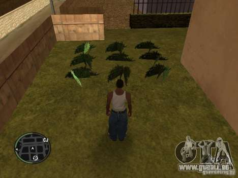 La marijuana v2 pour GTA San Andreas cinquième écran