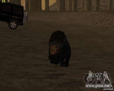 Ours pour GTA San Andreas