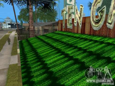 Distributeurs automatiques de Pepsi et plante pour GTA San Andreas cinquième écran