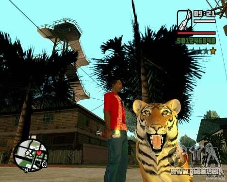 Tigre dans GTA San Andreas pour GTA San Andreas deuxième écran