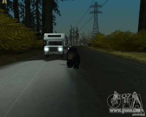 Ours pour GTA San Andreas deuxième écran