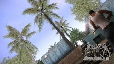 CamHack v1.2 pour GTA San Andreas