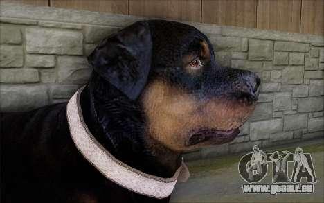 Rottweiler from GTA 5 für GTA San Andreas dritten Screenshot
