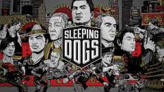 Boot Bildschirm schlafende Hunde
