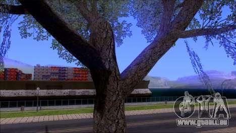 ENBSeries by egor585 V4 pour GTA San Andreas huitième écran