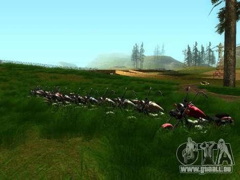 Biker Party 1.0 pour GTA San Andreas troisième écran
