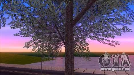 ENBSeries by egor585 V4 pour GTA San Andreas sixième écran