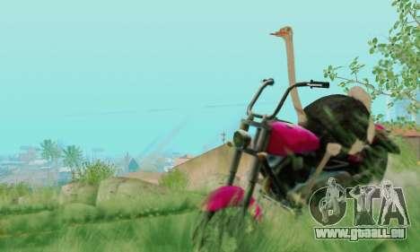 Ostrich From Goat Simulator pour GTA San Andreas sixième écran