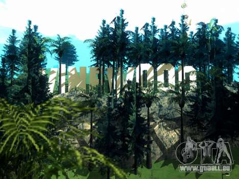 New Vinewood Realistic pour GTA San Andreas