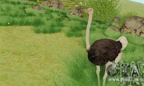 Ostrich From Goat Simulator pour GTA San Andreas deuxième écran