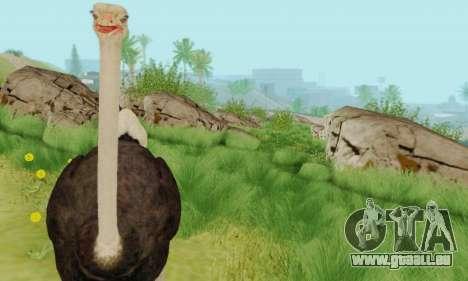 Ostrich From Goat Simulator pour GTA San Andreas quatrième écran