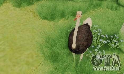 Ostrich From Goat Simulator für GTA San Andreas dritten Screenshot