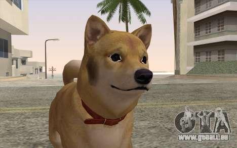 Chien pour GTA San Andreas troisième écran