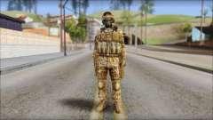 Desert GRU from Soldier Front 2