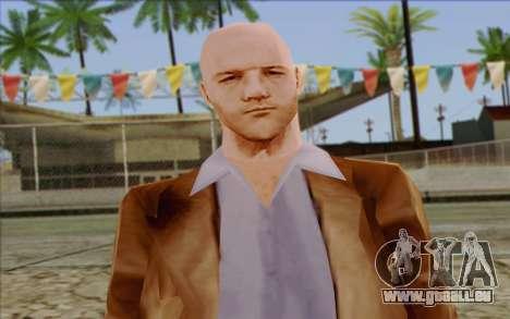 Russian Cats II Skin 6 für GTA San Andreas dritten Screenshot