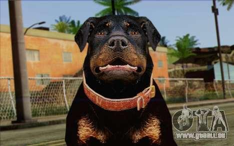 Rottweiler from GTA 5 Skin 3 pour GTA San Andreas troisième écran