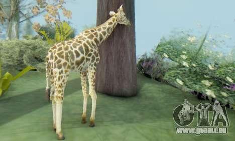 Giraffe (Mammal) pour GTA San Andreas troisième écran