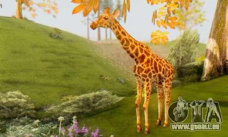 Giraffe (Mammal) pour GTA San Andreas