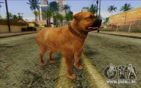 Rottweiler from GTA 5 Skin 2 für GTA San Andreas