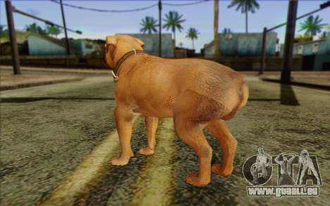 Rottweiler from GTA 5 Skin 2 pour GTA San Andreas deuxième écran
