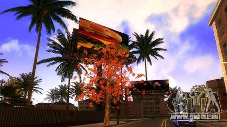 Textures HD skate Park et de l'hôpital V2 pour GTA San Andreas douzième écran