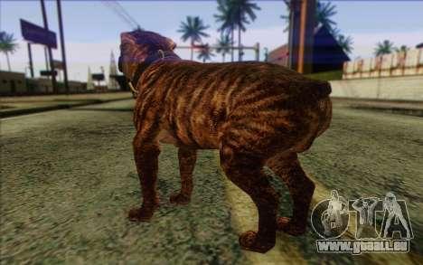 Rottweiler from GTA 5 Skin 1 pour GTA San Andreas deuxième écran