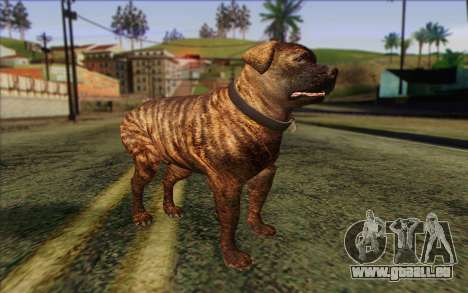 Rottweiler from GTA 5 Skin 1 pour GTA San Andreas