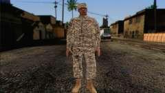California National Guard Skin 4