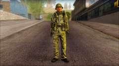 Ein Nordkoreanischer Soldat (Schurke, Krieger)