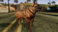 Rottweiler from GTA 5 Skin 1