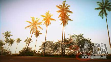 Vice ENB für GTA Vice City