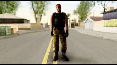 Counter Strike Skin 1