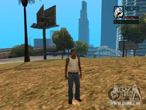 Numerische Anzeige HP für GTA San Andreas